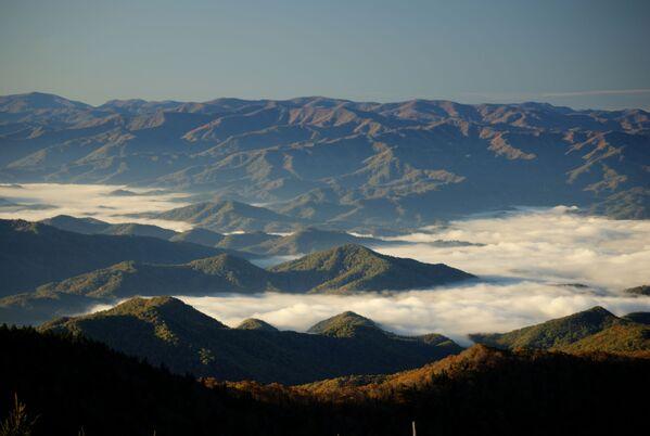 Vista delle Great Smoky Mountains negli Stati Uniti - Sputnik Italia