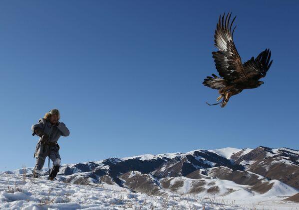 Un cacciatore libera la sua aquila addomesticata durante una tradizionale competizione di caccia nei pressi del villaggio di Kaynar nella regione di Almaty, Kazakistan - Sputnik Italia