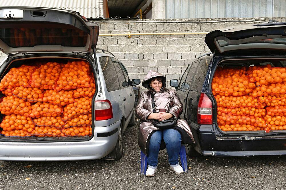 Vendita di mandarini al confine tra Russia e Abkhazia