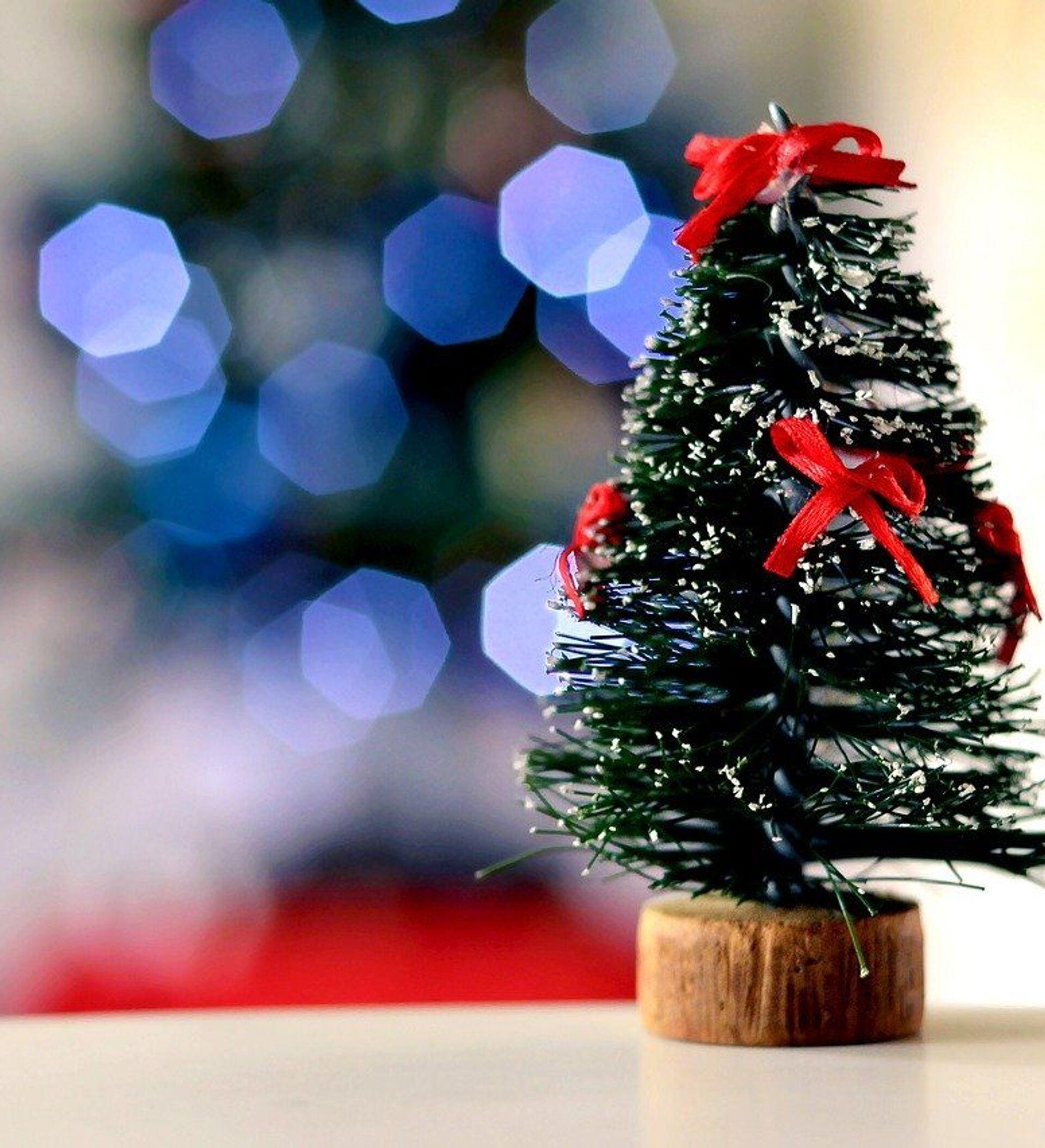 Buon Natale Italia.I Bonus Di Natale Sono In Arrivo Ecco Come Averli 20 11 2020 Sputnik Italia