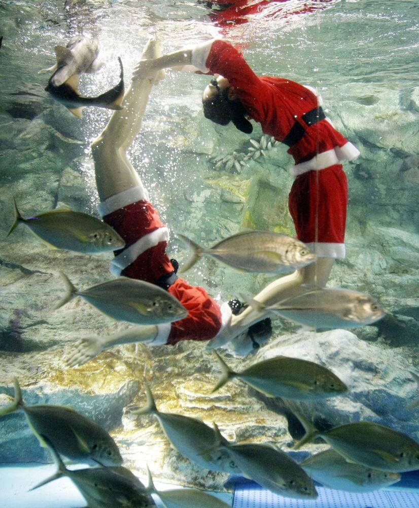Dei sub vestiti da Babbo Natale durante uno spettacolo all'Acquario di Seul, Corea del Sud