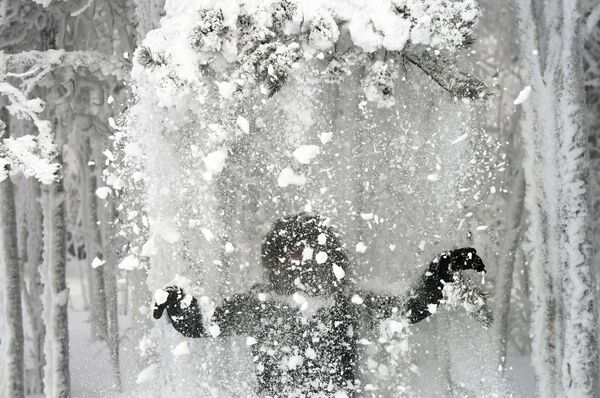Una donna nel bosco innevato sulle rive del fiume Enisej. - Sputnik Italia