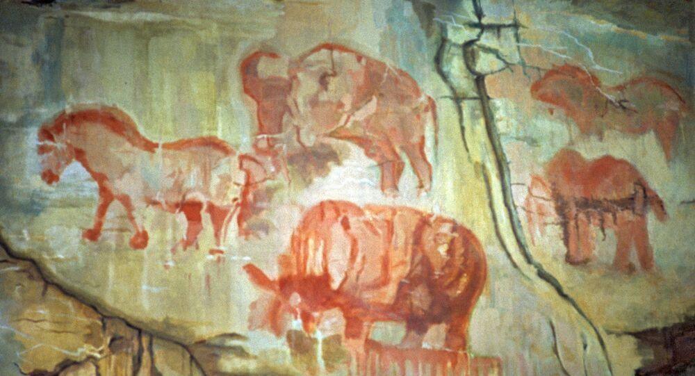 Immagini rupestri
