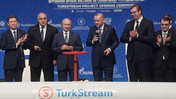 Vladimir Putin e Recep Tayyip Erdogan inaugurano il gasdotto Turkish Stream - Sputnik Italia
