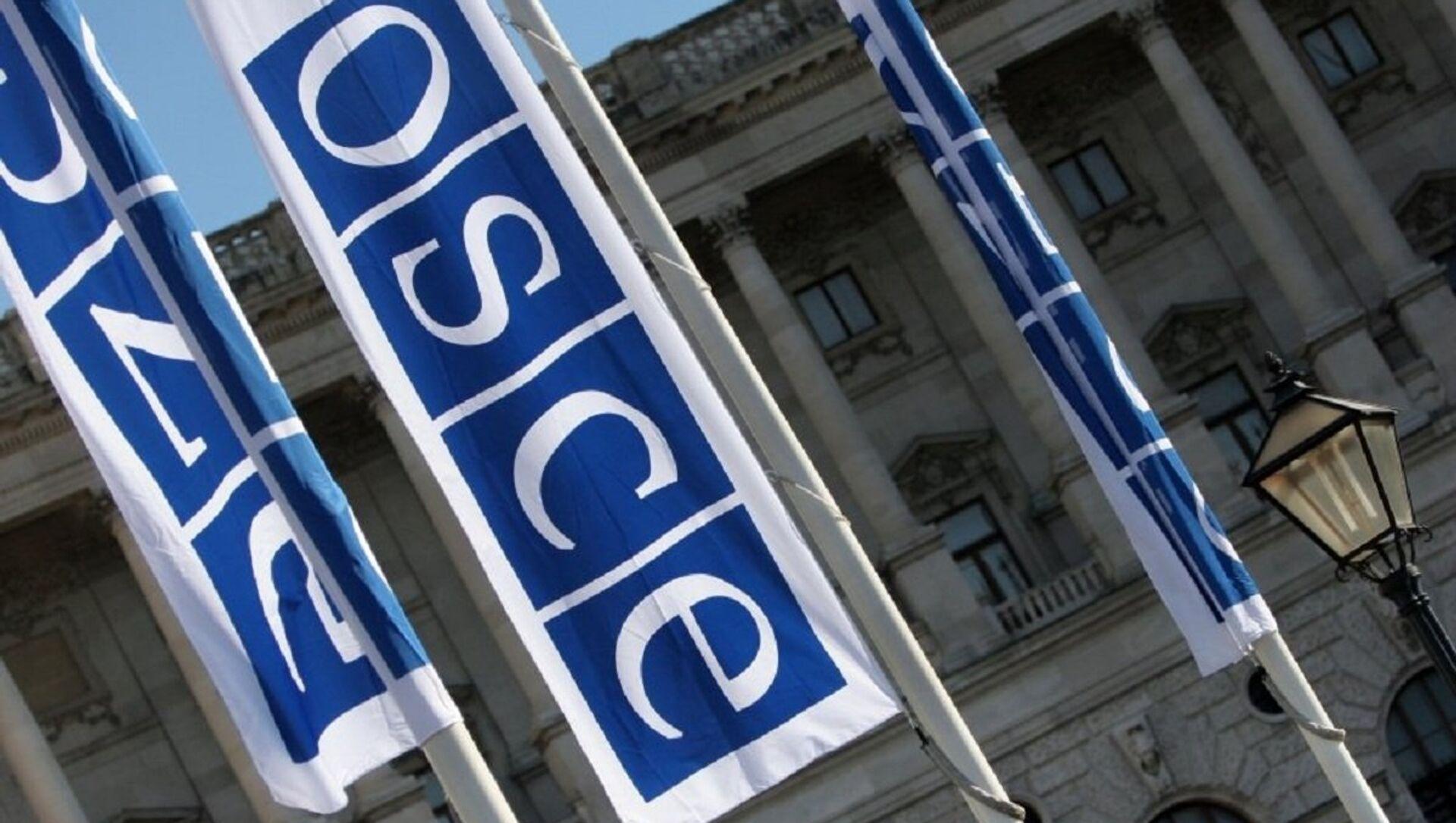 Flags with a logo of OSCE in Vienna - Sputnik Italia, 1920, 07.05.2021