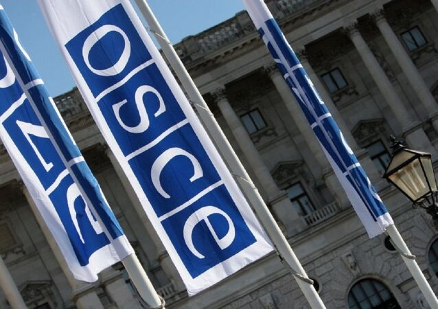 Flags with a logo of OSCE in Vienna