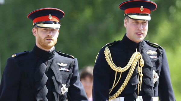 Principe Harry e principe William - Sputnik Italia