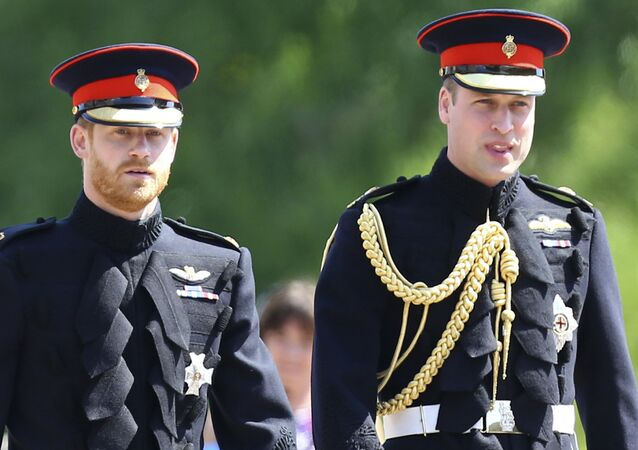 Principe Harry e principe William