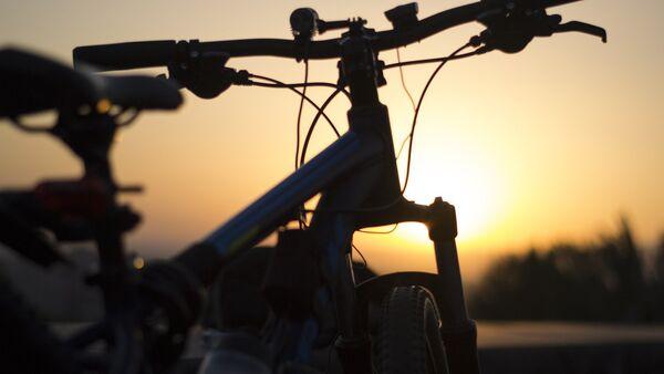 Bicicletta - Sputnik Italia