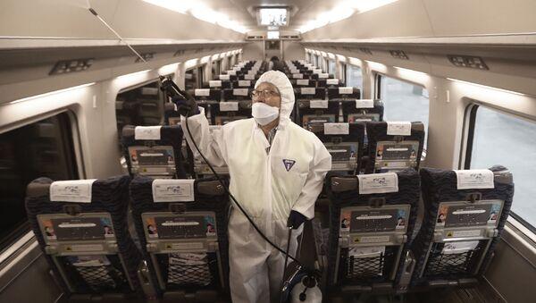 Sul treno a Seuol, Corea del Sud - Sputnik Italia