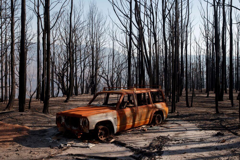 Una macchina bruciata nella Valle del Canguro dopo i massivi incendi boschivi in Australia.