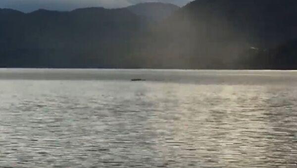 Il mostro del lago Ogopogo  - Sputnik Italia