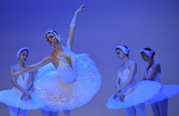 Ballerine di balletto russe alle prove de Il lago dei cigni al teatro Colon a Bogotà, in Colombia. - Sputnik Italia