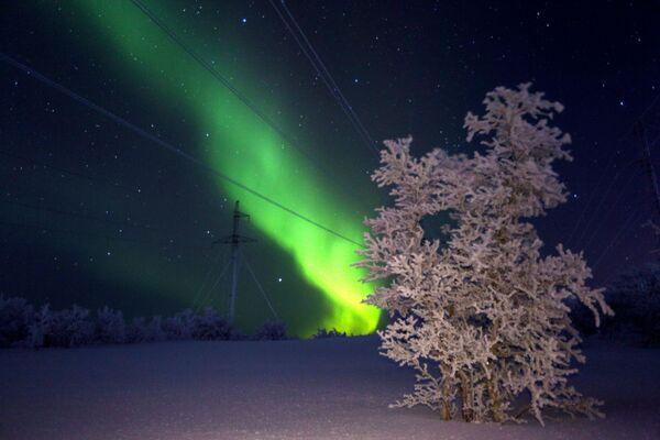 Aurora boreale nell'Oblast di Murmansk, in Russia. - Sputnik Italia