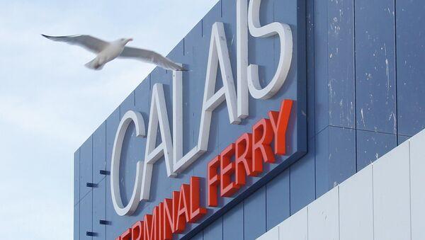 A seagull flies past he car ferry terminal in Calais, northern France, Monday, June 29, 2015. - Sputnik Italia