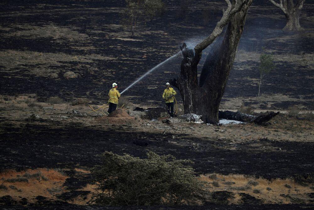 I pompieri australiani operano dopo gli incendi boschivi nella zona di Bumbalong, nello stato del Nuovo Galles del Sud.