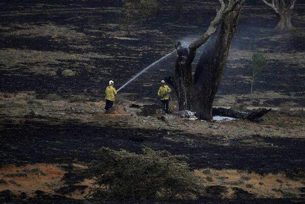 I pompieri australiani operano dopo gli incendi boschivi nella zona di Bumbalong, nello stato del Nuovo Galles del Sud. - Sputnik Italia