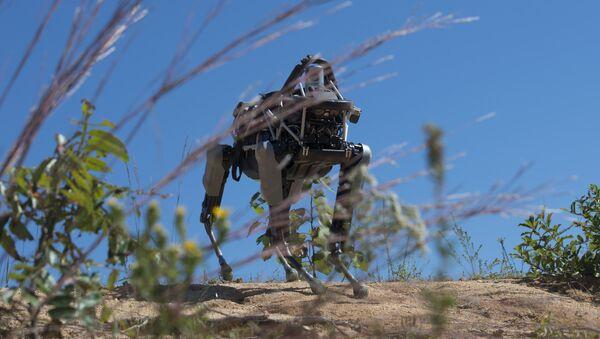 Il cane-robot Spot - Sputnik Italia