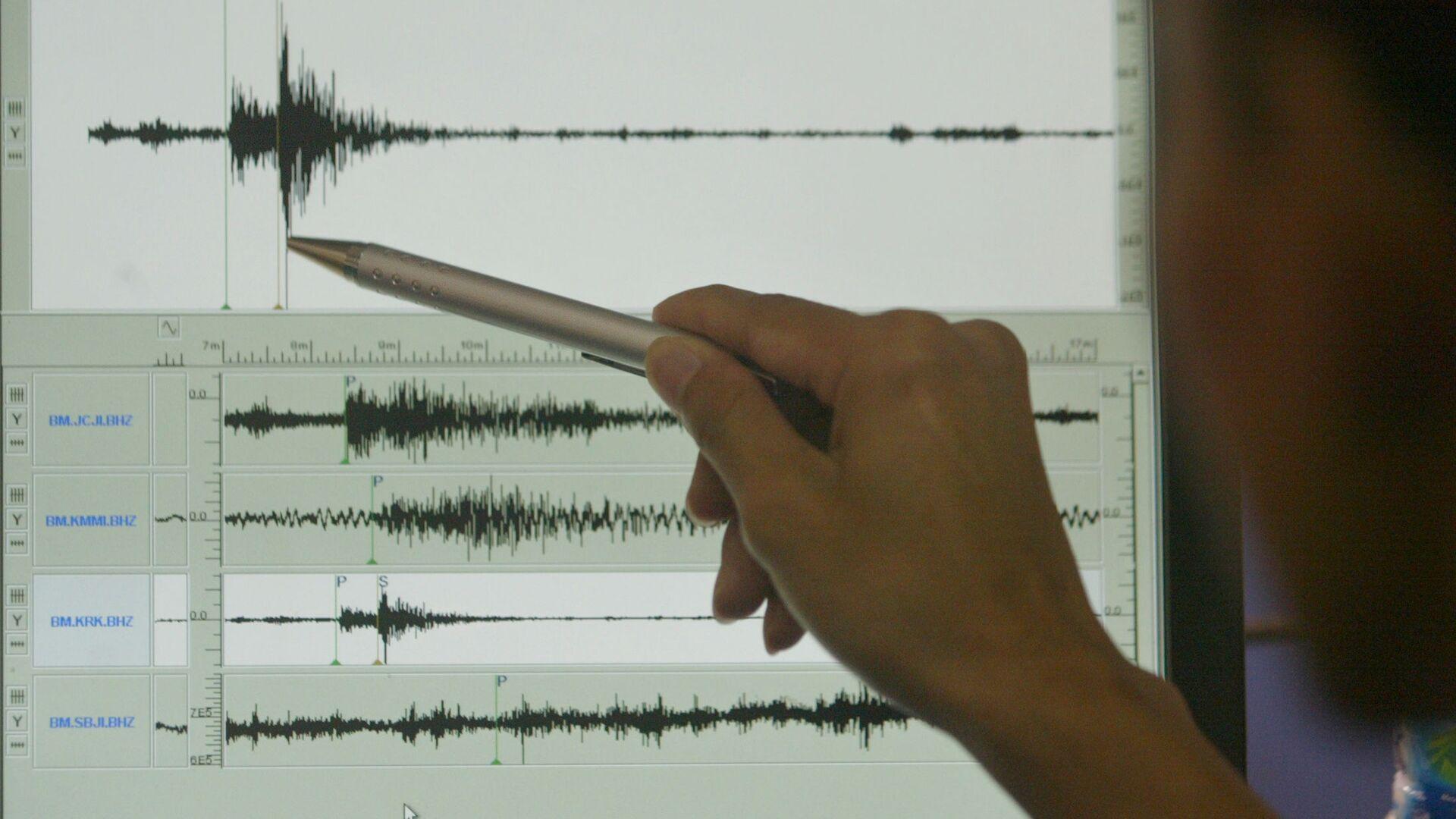Sismografo di terremoto - Sputnik Italia, 1920, 01.07.2021