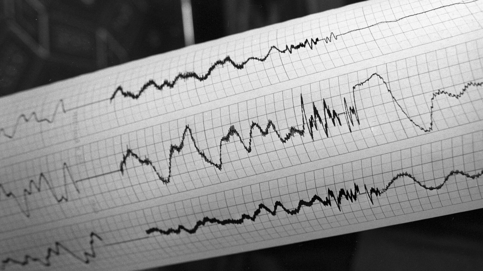 Sismografo di terremoto - Sputnik Italia, 1920, 07.07.2021