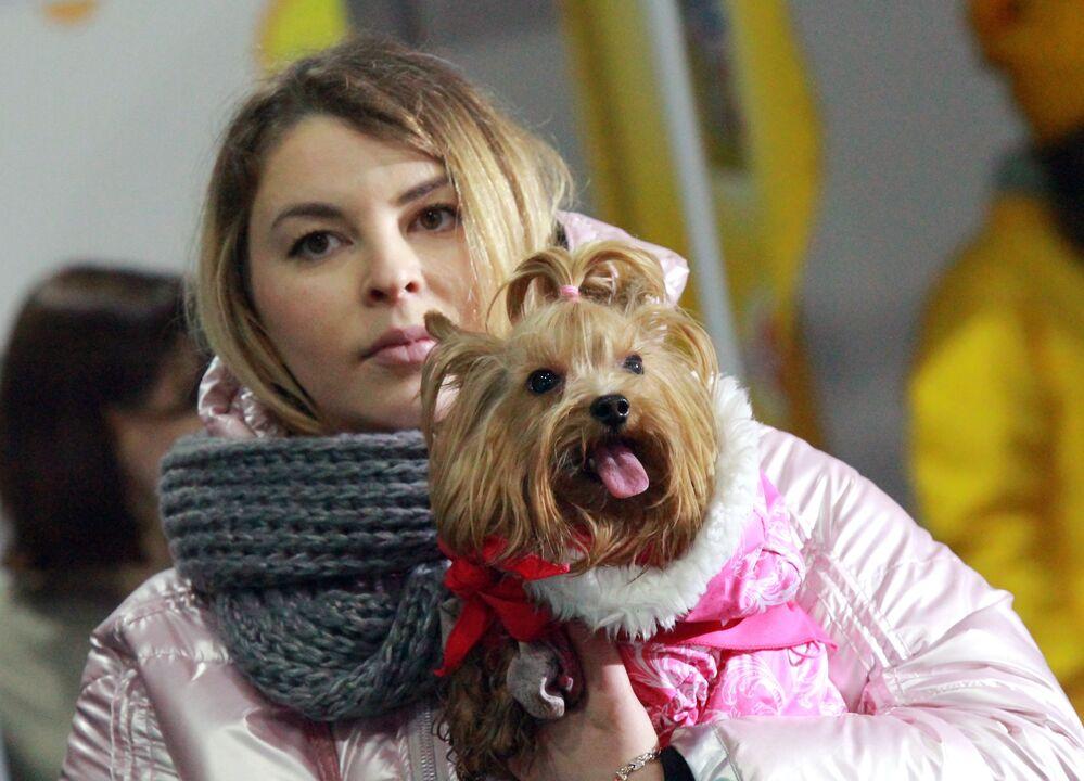 Una padrona con il suo yorkshire terrier al festival Il mio cane è un supereroe a Mosca.