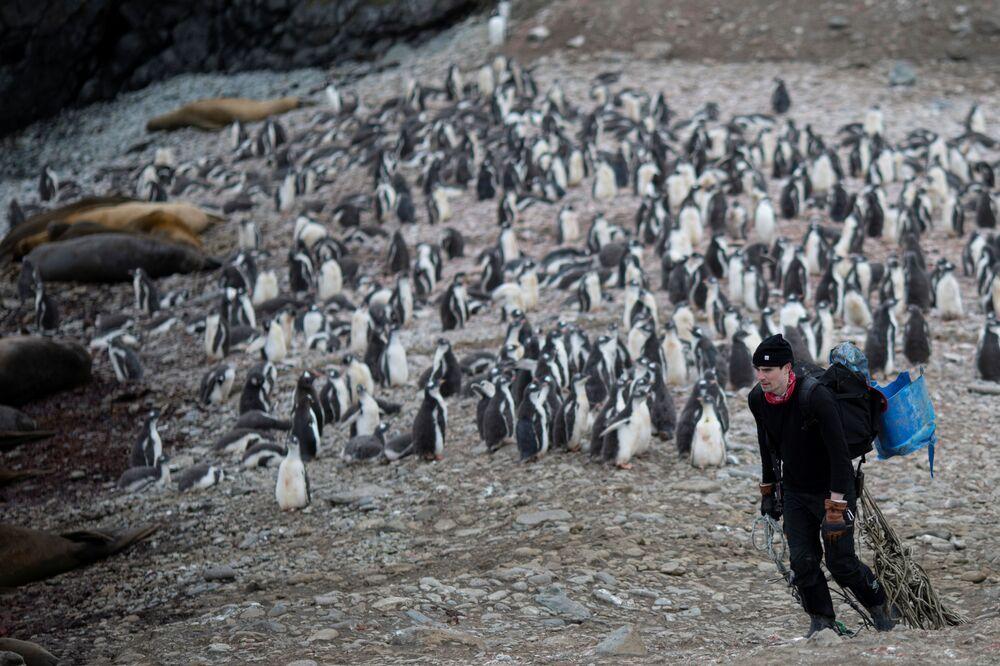 Lo scienziato raccoglie la spazzatura sull'isola di Snow, Antartide