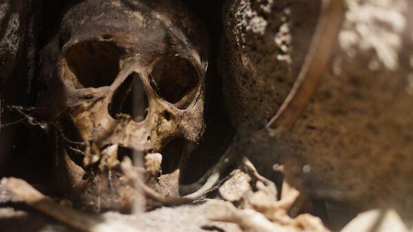 Древний череп - Sputnik Italia
