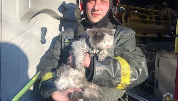 A Mosca pompieri salvano 5 persone e 1 gatto da incendio in appartamento - Sputnik Italia