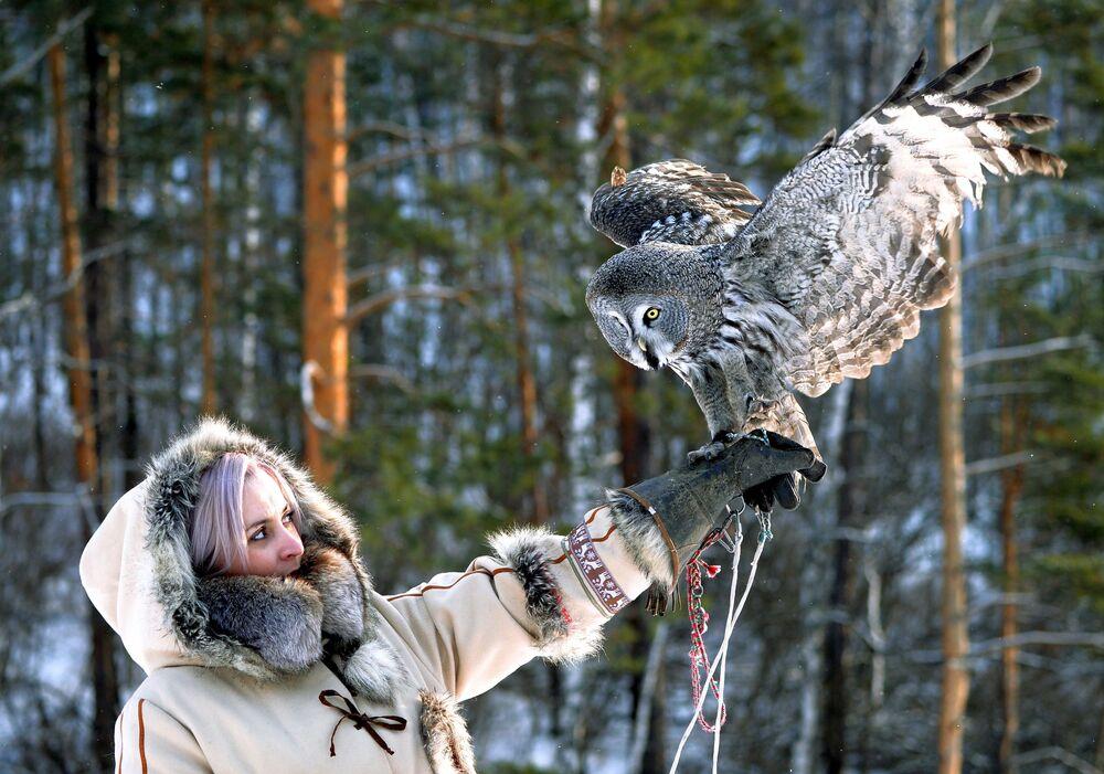 La guardiana dello zoo Daria Cherepanova con Mykh, grande gufo grigio, durante l'allenamento allo zoo Royev Ruchey a Krasnoyarsk, Russia