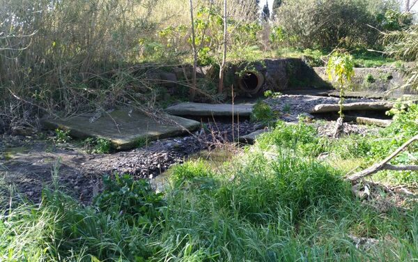 La depurazione delle acque non conforme in Sicilia - Sputnik Italia