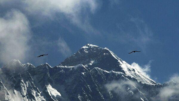 Uccelli sopra l'Everest - Sputnik Italia