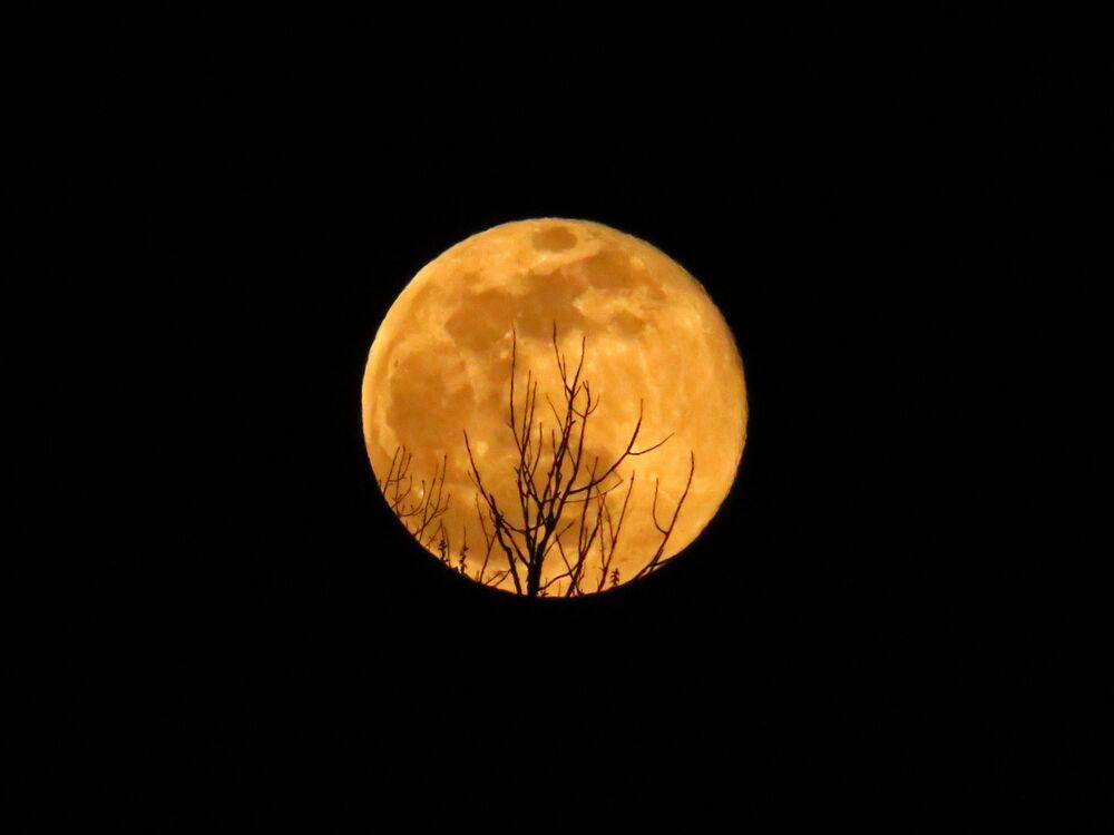 La luna piena a Washington, USA