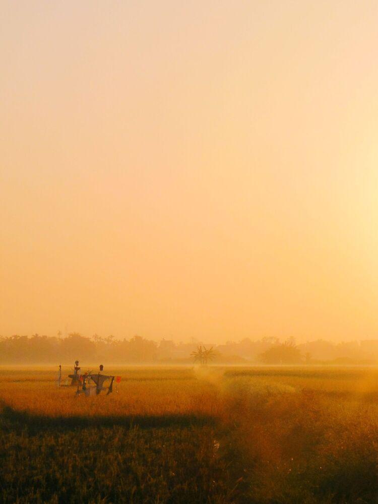 Lo scatto New Dawn, New Day (Nuova alba, nuovo giorno) del fotografo vietnamita Phong Le.
