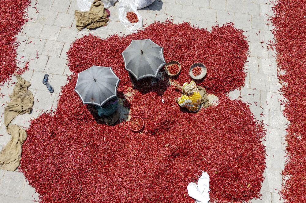 L'essicamento del pepperoncino in Bangladesh.
