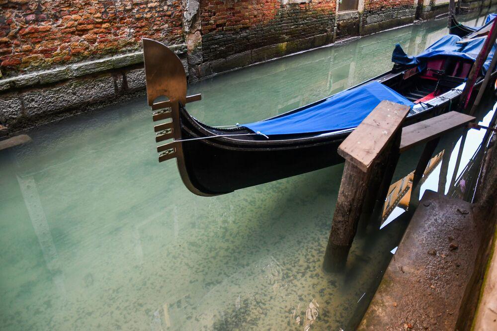 L'acqua diventa trasparente in un canale di Venezia per la crisi turistica dovuta al coronavirus.