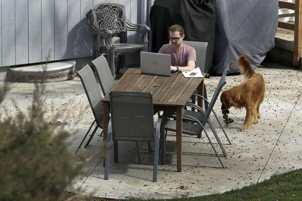 Erik Wray lavora al suo computer nel cortile di casa sua, USA, il 19 marzo 2020 - Sputnik Italia