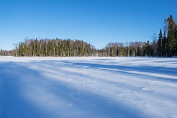 Un lago nella Repubblica di Carelia, Russia - Sputnik Italia