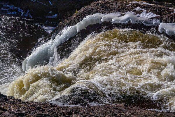 La perla della Riserva è la Cascata di Kivach situata sul fiume Suna che percorre parte del territorio della Riserva - Sputnik Italia