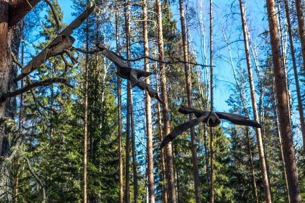Installazione artistica ecologica sul territorio della Riserva Naturale di Kivach nella Repubblica di Carelia, Russia - Sputnik Italia