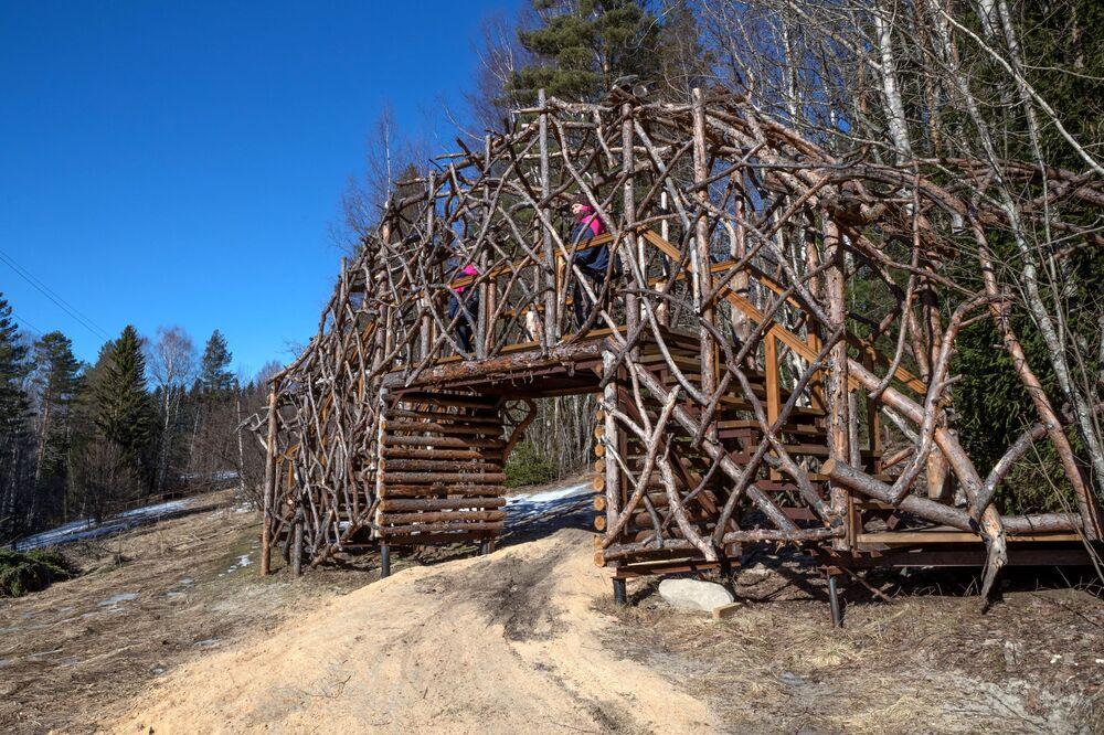 Installazione artistica ecologica sul territorio della Riserva Naturale di Kivach nella Repubblica di Carelia, Russia