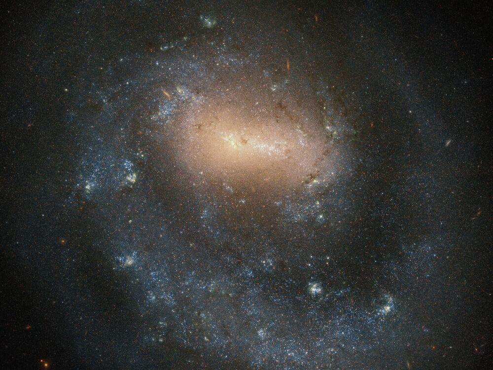Galassia NGC 4618 nella costellazione di Hounds Dogs