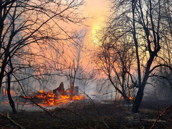 Un incendio boschivo nel pressi del villaggio di Rahivka nella zona di alienazione di Chernobyl. - Sputnik Italia