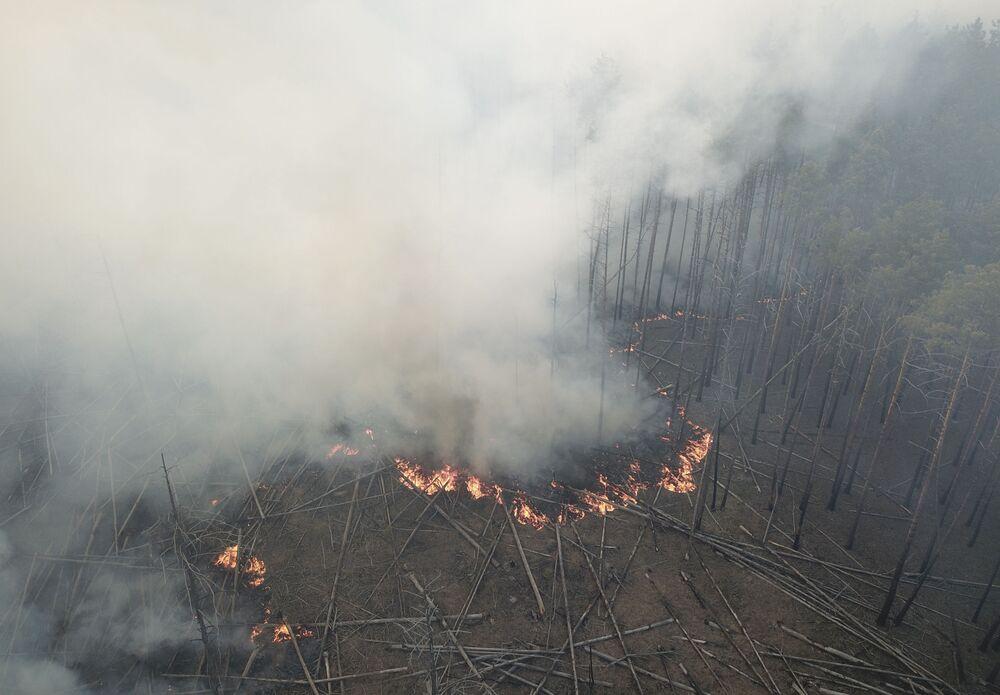 Un incendio boschivo vicino al villaggio di Volodymyrivka nella zona di alienazione di Chernobyl, Ucraina.
