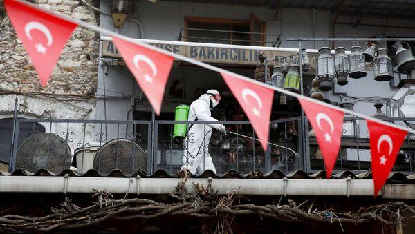 Sanificazione delle strade ad Istanbul - Sputnik Italia