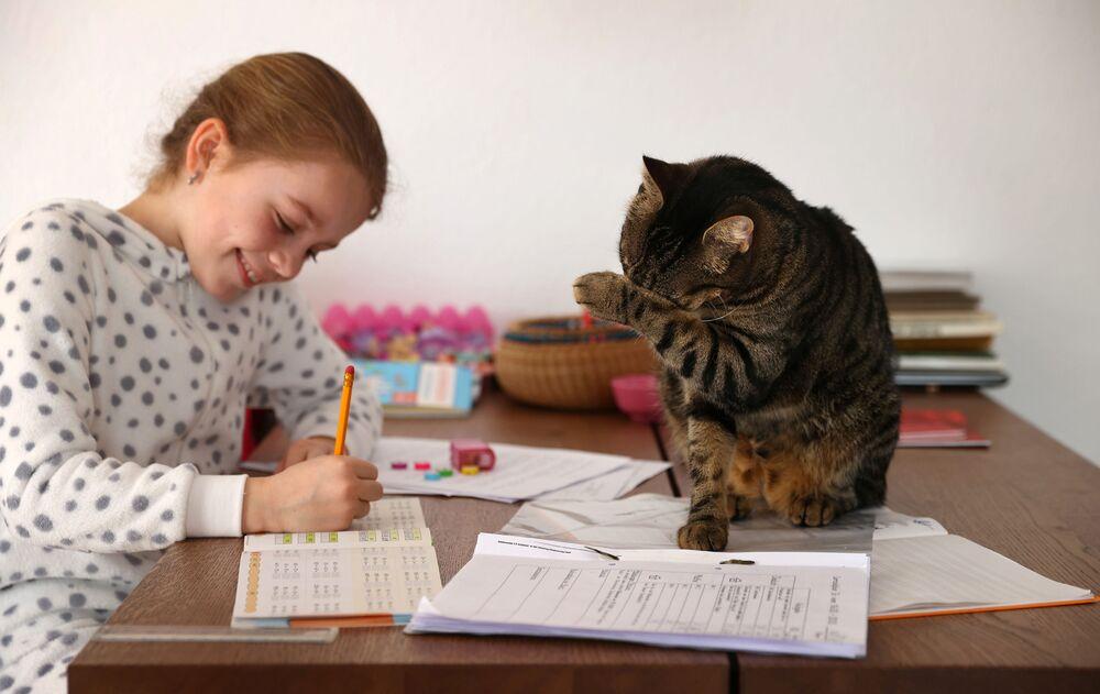 Kaethe Singer, accompagnata dal suo gatto, studia a casa durante una quarantena per la diffusione del coronavirus (COVID-19), a Jugenheim, Germania, il 19 marzo 2020