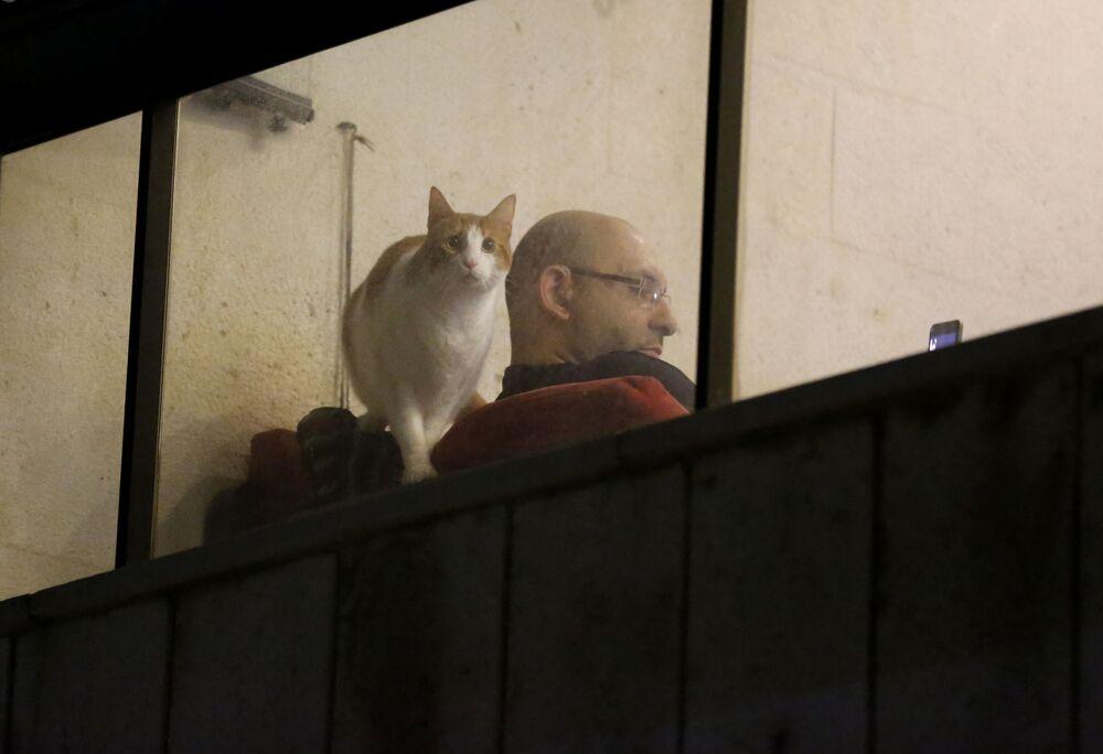 Un uomo siede a casa sua mentre il suo gatto guarda attraverso una finestra del balcone a Beirut, Libano, martedì 31 marzo 2020