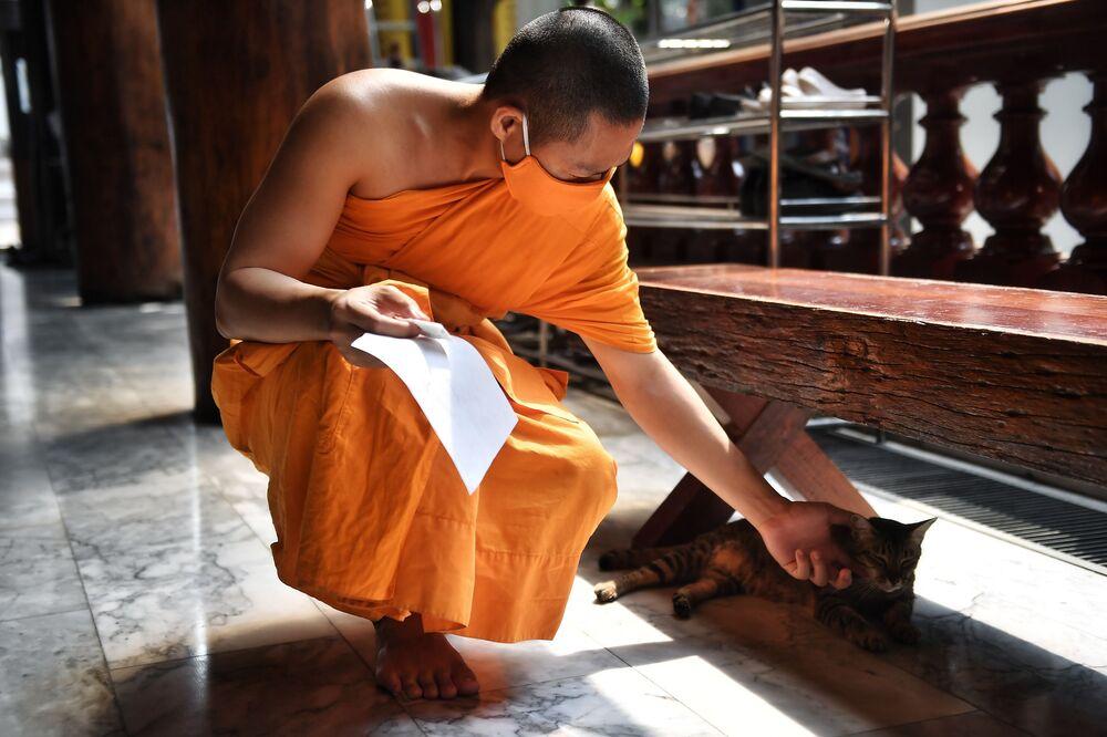 Un monaco accarezza un gatto nel tempio buddista di Wat Pak Nam a Bangkok, il 16 marzo 2020