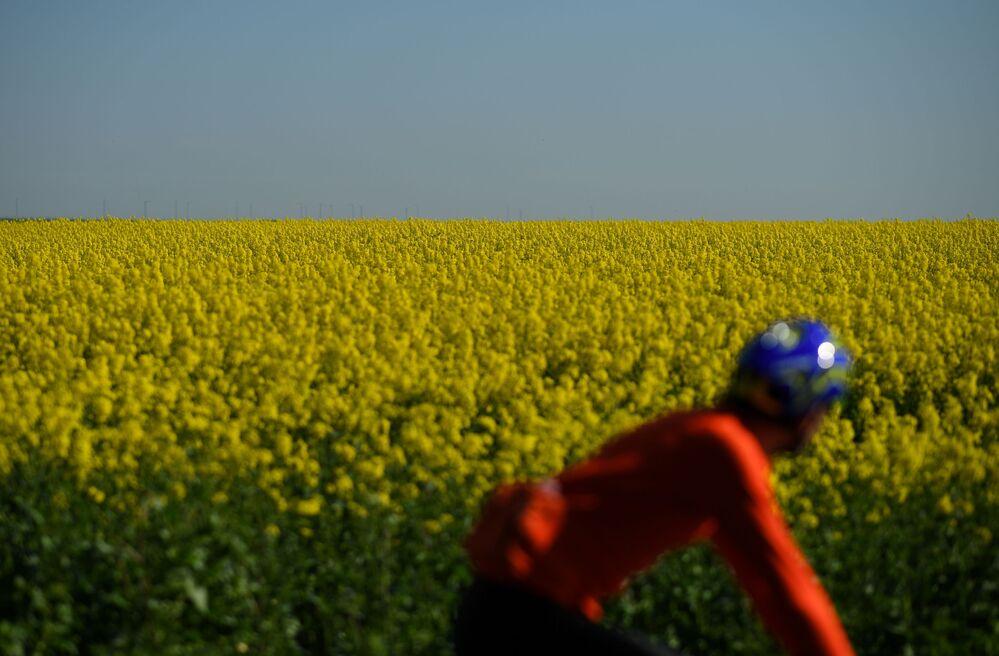 Un ciclista passa un campo di fiori in Gran Bretagna