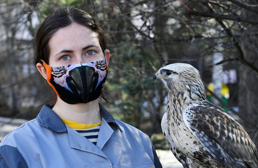 Ornitologa del parco di flora e fauna di Royev Ruchey Daria Chereshkevich con una poiana di nome Stesha a Krasnoyarsk