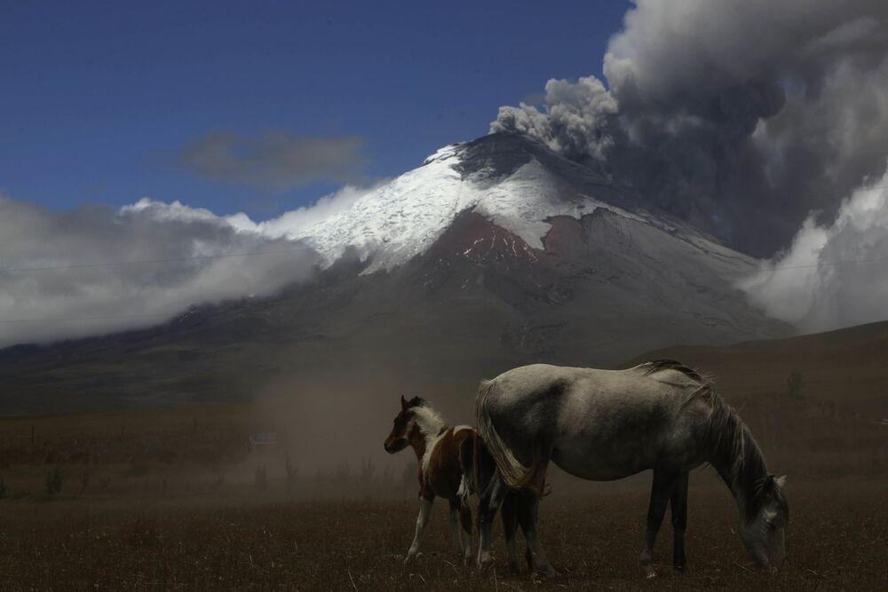 Il Cotopaxi è un vulcano delle Ande che si trova in Ecuador